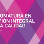 Diplomatura en GESTIÓN INTEGRAL DE LA CALIDAD ITBA – IPACE – 2017